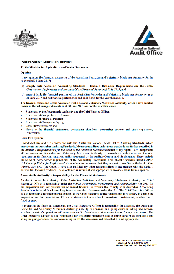 Auditor report