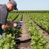 Innovations in agricultural productivity
